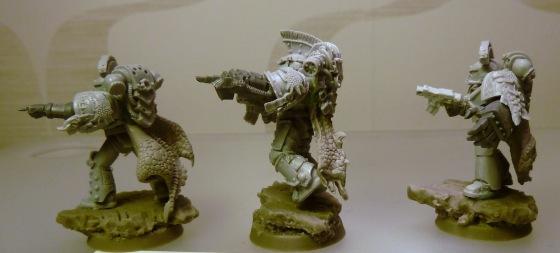 Picture shamelessly stolen from this blog: http://d6-gamer.blogspot.ca/2012/12/wip-salamander-legion.html